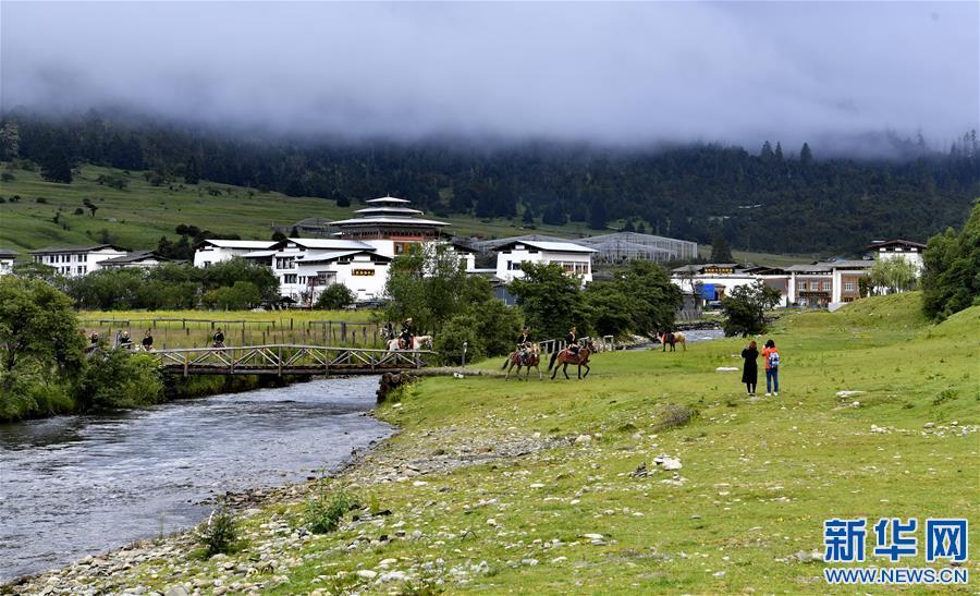 西藏林芝:避暑天堂惹人醉(圖)