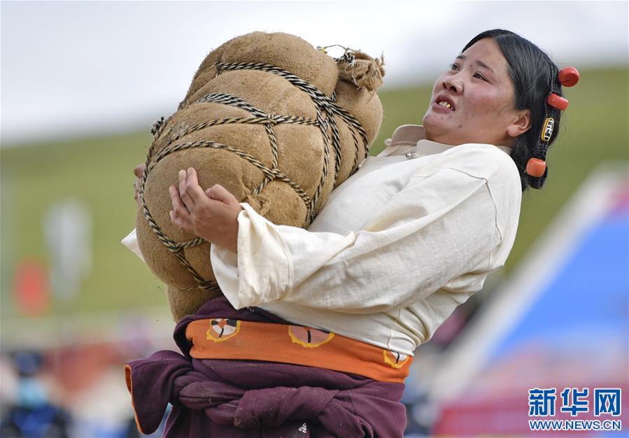 西藏那曲:賽馬藝術節上的比拼(圖)