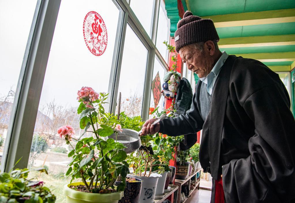 苦難和新生——西藏翻身農奴影像檔案:昂旺尼瑪